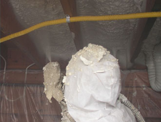 Florida Crawl Space Insulation